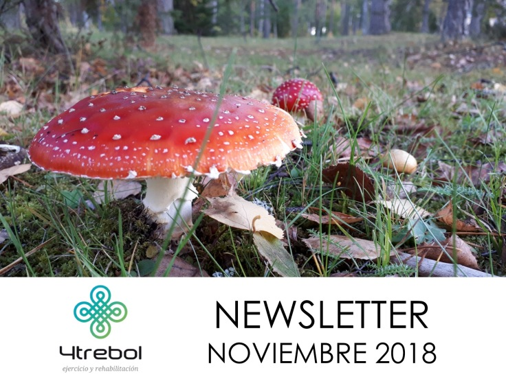 NEWSLETTER NOV 18