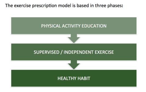 prescripción de ejercicio.png